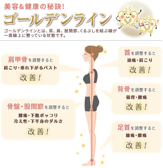 美容&健康の秘訣!ゴールデンライン 肩こり・バストのお悩み・下腹ポッコリ・冷え性・下半身のダルさ・頭痛・肩こり・猫背・腰痛に効果!